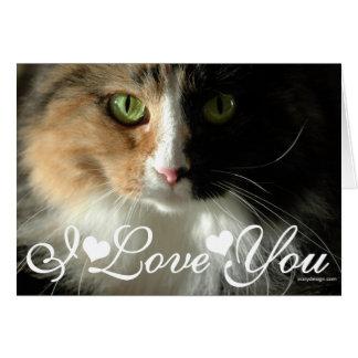 Die Liebe die Katzenaugen-Foto-des Bild-I Sie Grußkarte