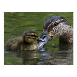 Die Liebe einer Mutter Postkarte
