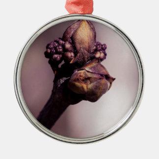 Die lila Knospe Silbernes Ornament