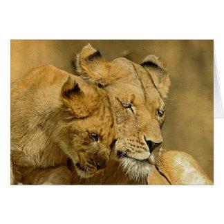 Die Löwin und die CUB-Karte Karte