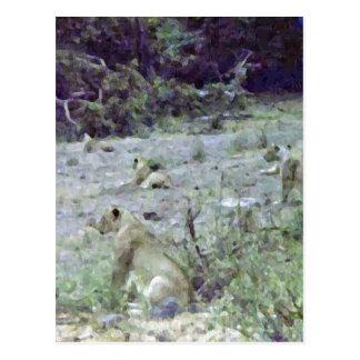 Die Löwinnen Uhr und Wartezeit Postkarte