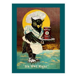 Die magische Hefe der Eule Postkarte