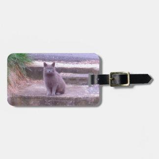 Die Nachbar-Grau-Katze Kofferanhänger