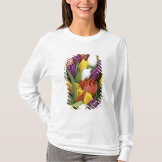 Die Niederlande, Südholland, Amsterdam T-Shirt