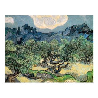 die Olivenbäume, 1889, Vincent van Gogh Postkarte