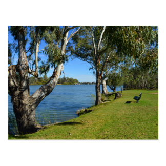 Die Park-Bank, Berri, Südaustralien, Postkarte