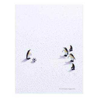 Die Pinguine, die Fußball spielen Postkarte