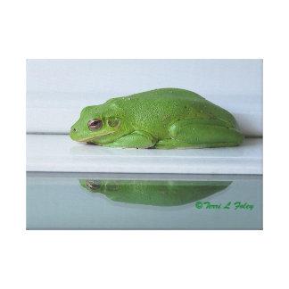 Die Reflexions-Leinwand-Druck eines Frosches Leinwanddruck