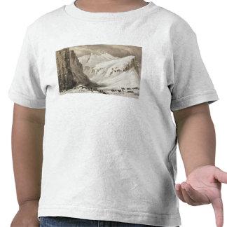 Die Schlitten, die ankommen im südlichen Depot, Shirts