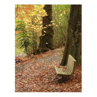Die Schönheit des Herbstes Postkarte
