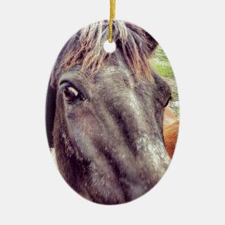 Die Schönheit des Pferds Keramik Ornament