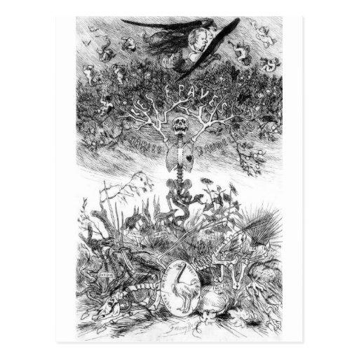 Die Schrotte Vintage Felicien Postkarte