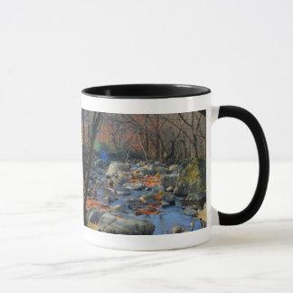 Die schwachen Töne der Natur Tasse