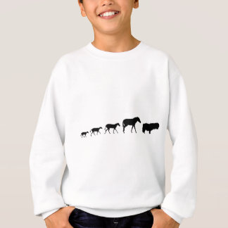 Die Shetlandinseln-Pony-Evolution Sweatshirt