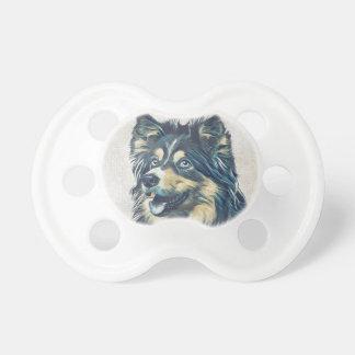 Die Shetlandinseln-Schäferhund, der BooginHead® Schnuller