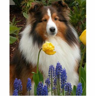 die Shetlandinseln-Schäferhund in den Blumen Fotoskulptur Schlüsselanhänger