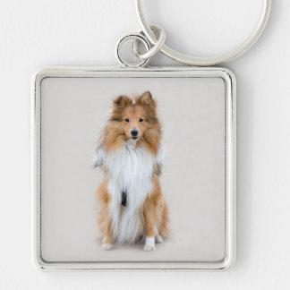 Die Shetlandinseln-Schäferhund, sheltie niedliches Silberfarbener Quadratischer Schlüsselanhänger