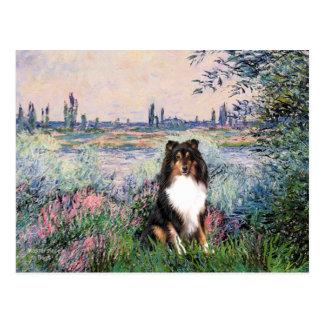 Die Shetlandinseln-Schäferhund (Tri) - durch die Postkarte