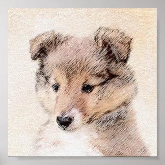 Die Shetlandinseln-Schäferhund-Welpe, der Poster
