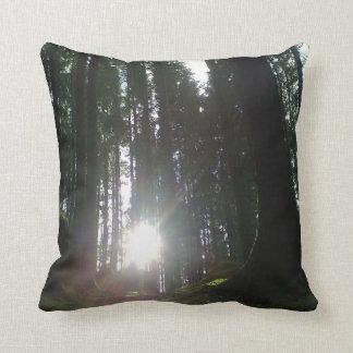 Die Sonne im Wald Kissen