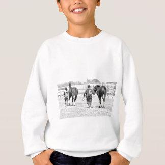 Die Spitzenpferde des Aquädukts, die zur Koppel Sweatshirt
