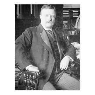 Die Stier-Elche Teddy Roosevelt Vintag Postkarte
