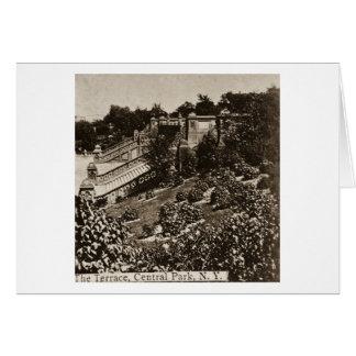 Die Terrasse in Central Park NYC Vintages 1900 Karte