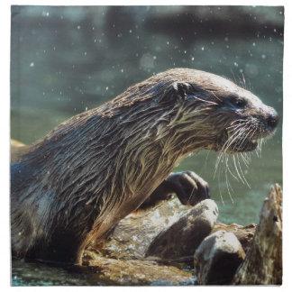 Die Tier-Foto Fluss-Otter Tier-Liebhaber Stoffserviette