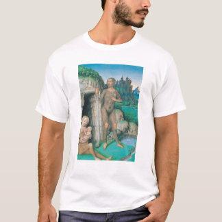 Die vier Zustände der Gesellschaft: Der wilde T-Shirt