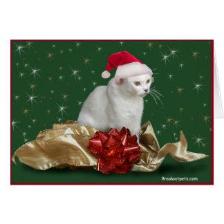 Die Weihnachtskatze Notecard Karte