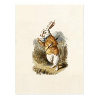 Die weiße Kaninchen-Postkarte Postkarte