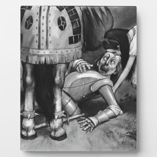 Die weißer Ritter-Fälle Fotoplatte
