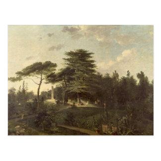 Die Zeder vom Libanon im Jardin des Plantes Postkarte