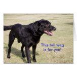 Dieser Schwanz Wag ist für Sie.  Schwarze Labrador