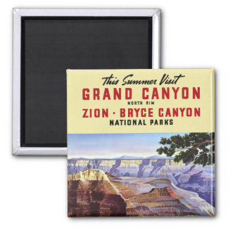 Dieser Sommer-Besuchs-Grand Canyon Quadratischer Magnet