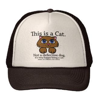Dieses ist eine Katzen-Hüte Caps