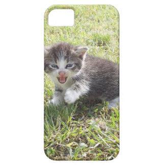 Dieses Kätzchen kämpft für Freiheit iPhone 5 Hülle