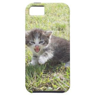 Dieses Kätzchen kämpft für Freiheit Schutzhülle Fürs iPhone 5