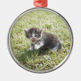 Dieses Kätzchen kämpft für Freiheit Silbernes Ornament