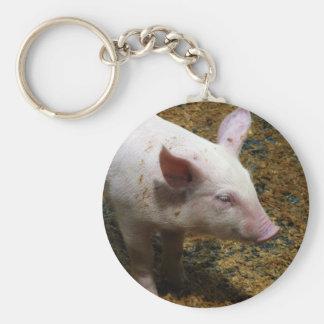 Dieses kleine Piggy - Baby-Ferkel-Foto Schlüsselanhänger