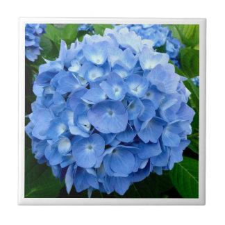 digitaler Fliesenentwurf der Hydrangea-Blume Keramikfliese