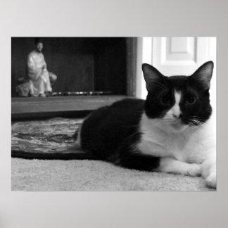 Ding: Inländische kurze Haar-Katze Plakatdrucke