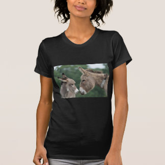 Dinky Esel T-Shirt