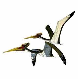 Dinosaurier-Foto-Skulptur Pterosaurs Gregory Paul Freistehende Fotoskulptur