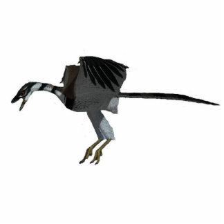 Dinosaurier-Foto-SkulpturArchaeopteryx Greg Paul Freistehende Fotoskulptur