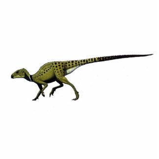 Dinosaurier-Foto-SkulpturHeterodontosaurus Acryl Ausschnitt