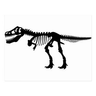 Dinosaurier-Skelett T Rex Postkarte