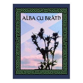 Distel GUs Bràth Schottland Saltire Celtic alba Postkarte
