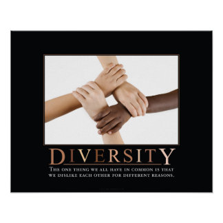 Diversity Demotivational Plakat