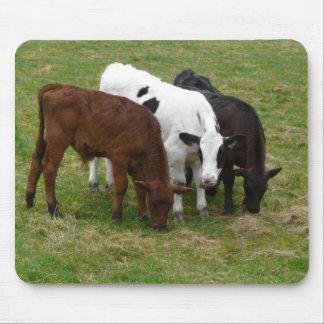 Diversity - mehrfarbiges Vieh Mauspads